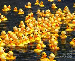 Mark your calendars for the June 8 Rubber Duck Races and Festival at the Farmstead