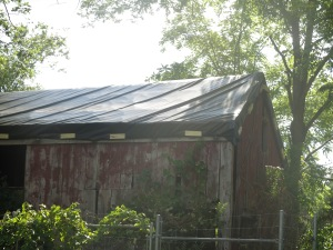 Cowshed with new tarp summer 2014
