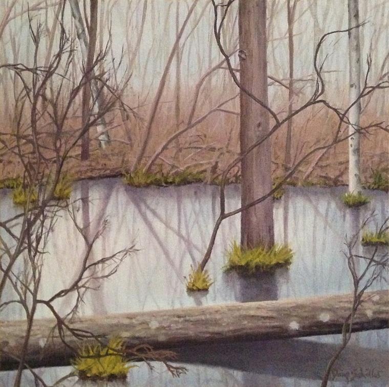 Doug Schiller_The Great Swamp In Winter 3