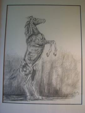 Majesty - Joanne Farley - graphite