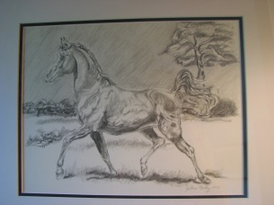 Pasture Play - Joanne Farley - graphite